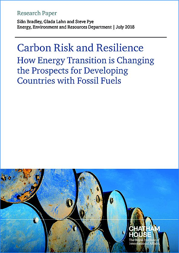Carbon Risk and Resilience: How Energy Transition is Changing the Prospects for Developing Countries with Fossil Fuels