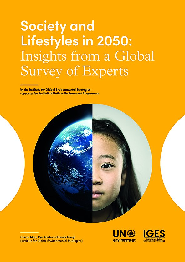 Society and Lifestyles in 2050: Insights from a Global Survey of Experts