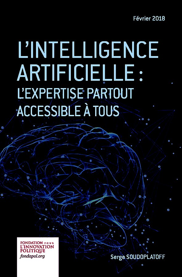 L'Intelligence artificielle : l'expertise partout accessible à tous